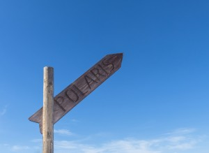 Signpost with writing Polaris directing north against blue sky.
